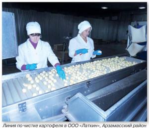 Где выращивают картофель в нижегородской области