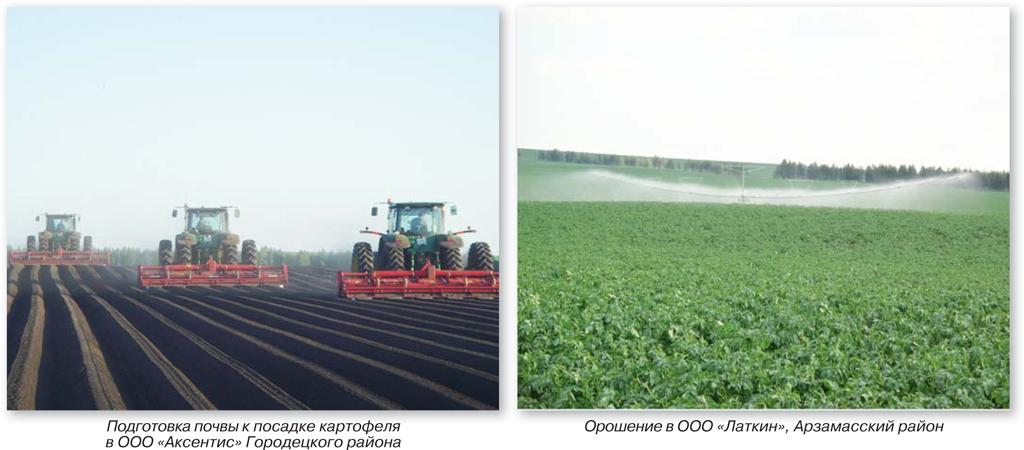 подготовка-почвы-и-орошение