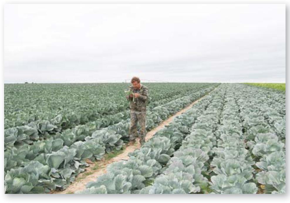 фермер-в-поле